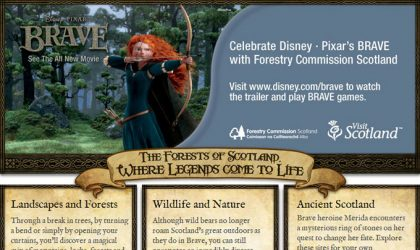 Disney Brave web design for Forestry Commission Scotland